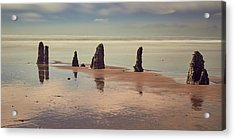 Acrylic Print featuring the photograph Ghost Forest by Whitney Goodey