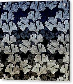 Ginko Leaf Pattern Acrylic Print