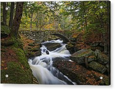 Acrylic Print featuring the photograph Gleason Falls by Juergen Roth