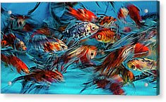 Gold Fish Abstract Acrylic Print