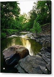Golden Creek Acrylic Print