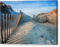Golden Glow Dunes Acrylic Print