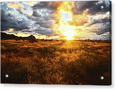 Golden Light Of Southern Arizona Acrylic Print