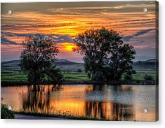 Acrylic Print featuring the photograph Golden Pond by Fiskr Larsen