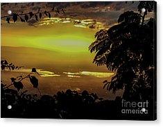 Golden Sunset On Strawberry Hill Acrylic Print