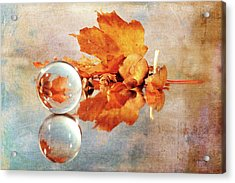 Acrylic Print featuring the photograph Golden Tones Of Fall by Randi Grace Nilsberg