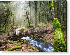 Acrylic Print featuring the photograph Gorton Creek by Nicole Young