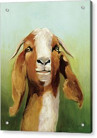 Got Your Goat V2 Acrylic Print