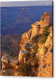 Grand Canyon National Park   P Acrylic Print by Ron thomas