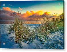 Grass And Snow Sunrise Acrylic Print
