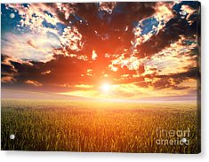 Green Field And Beautiful Sunset Acrylic Print