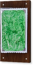 Green Jungle Acrylic Print