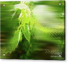 Green Leaves Acrylic Print
