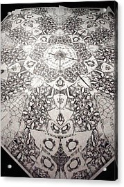 Grillo Acrylic Print