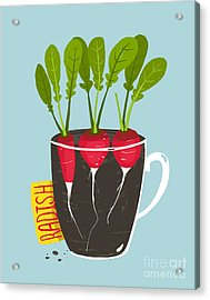 Growing Radish With Green Leafy Top In Acrylic Print