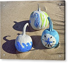 Acrylic Print featuring the photograph Halloween Blue And White Pumpkins On A Dune by Bill Swartwout Fine Art Photography