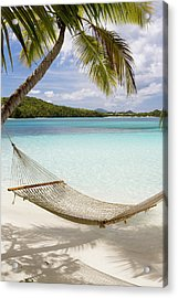 Hammock Hung On Palm Trees On A Acrylic Print
