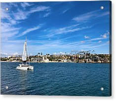 Harbor Sailing Acrylic Print