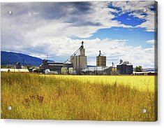 Acrylic Print featuring the photograph Harvest Time In Idaho 2 by Tatiana Travelways