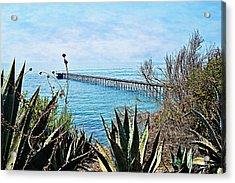 Haskell Beach Pier Acrylic Print