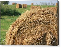 Acrylic Print featuring the photograph Hay Bail Closeup by Tatiana Travelways