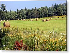 Acrylic Print featuring the photograph Hay Bails And Wild Flowers by Tatiana Travelways