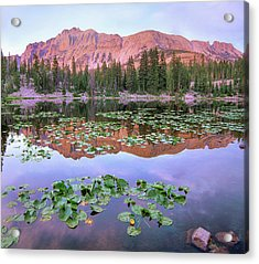 Hayden Peak And Butterfly Lake, Uinta Acrylic Print
