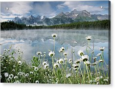 Hector Lake In Banff National Park Acrylic Print