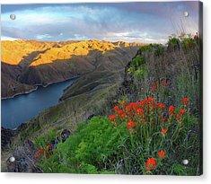 Hells Canyon View Acrylic Print by Leland D Howard
