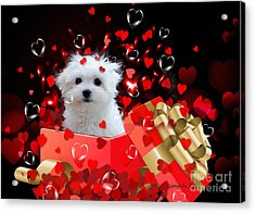 Hermes The Valentine Boy Acrylic Print