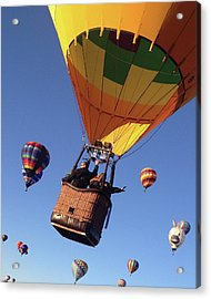 Hi From Up High Acrylic Print