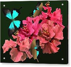 Hibiscus Butterfly Joy Acrylic Print