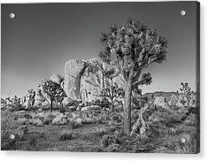 Hidden Valley Rock Acrylic Print