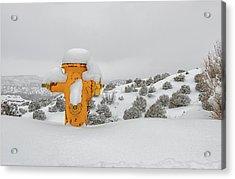 High Desert Hydrant Acrylic Print