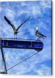 Acrylic Print featuring the digital art High Diving Gulls by Rhonda Strickland