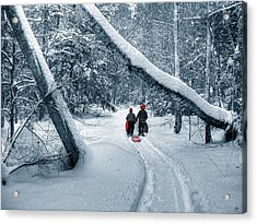 Acrylic Print featuring the photograph Hiking Into The Gully by Wayne King