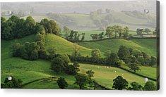 Hills Acrylic Print by Lewis Gillingham