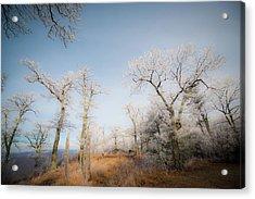 Hilltop Hoarfrost Acrylic Print
