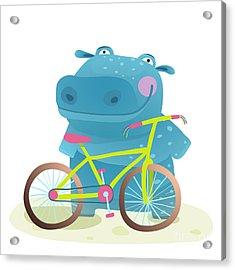Hippo With Bicycle. Happy Fun Wild Acrylic Print