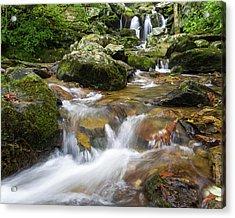 Hogcamp Branch Falls I Acrylic Print