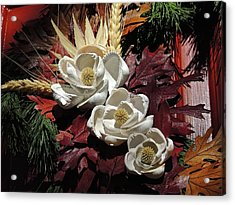 Acrylic Print featuring the photograph Holiday Shells by Don Moore