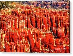 Hoodoos In Bryce Canyon Acrylic Print by Bob Lentz