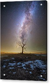 Acrylic Print featuring the photograph Hopeless He Stays  by Aaron J Groen
