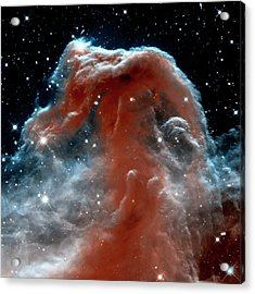 Acrylic Print featuring the photograph Horsehead Nebula Outer Space Photograph by Bill Swartwout Fine Art Photography