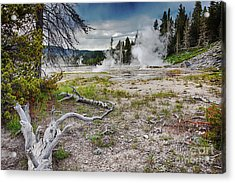 Acrylic Print featuring the photograph Hot Springs And Geysers Landscape In Yellowstone by Tatiana Travelways
