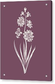 Hyacinth Purple Flower Acrylic Print