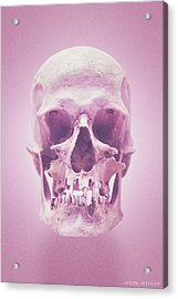 Ice Cream II Acrylic Print