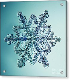 Ice Crystal Snowflake Macro Acrylic Print