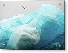 Acrylic Print featuring the photograph Iceland Iceberg by Nicole Young