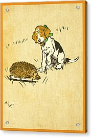 Puppy And Hedgehog, Illustration Of Acrylic Print